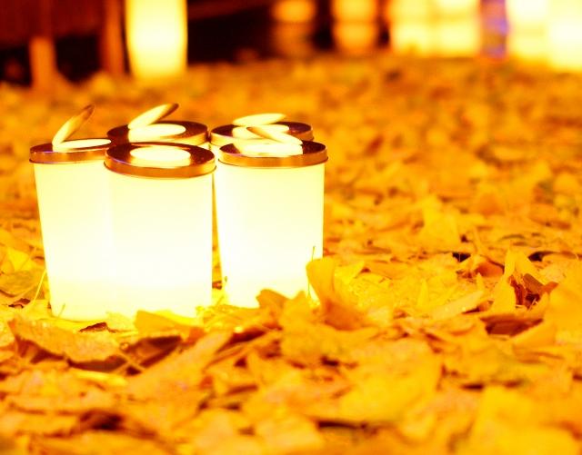 ライト取り付け・群馬県のアパートマンションリフォーム